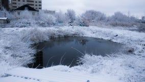 Ландшафт озера зим Стоковая Фотография