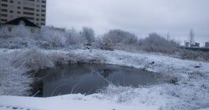 Ландшафт озера зим Стоковые Изображения