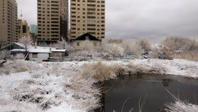 Ландшафт озера зим Стоковые Фотографии RF