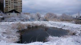 Ландшафт озера зим Стоковая Фотография RF