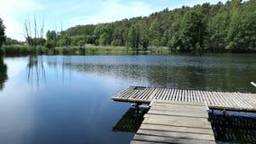 Ландшафт озера летом Сельская местность в Havelland в Германии акции видеоматериалы