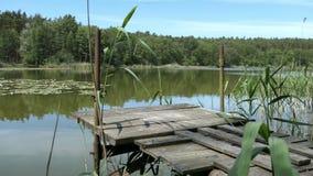 Ландшафт озера летом Сельская местность в Havelland в Германии сток-видео