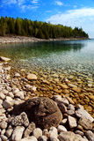 ландшафт озера стоковое фото rf