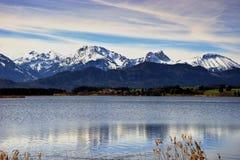 Ландшафт озера Forggensee в Германии стоковое фото rf