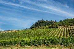 Ландшафт около San Gimignano Тосканы Стоковая Фотография RF