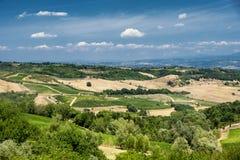 Ландшафт около San Gimignano Тосканы Стоковые Фото