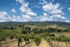 Ландшафт около San Gimignano Тосканы Стоковые Изображения