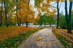 Ландшафт осени в парке города с кленовыми листами на идя пути Стоковое фото RF