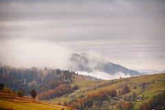 Ландшафт осени горы с красочным illage леса на высокой Стоковое Фото