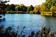 Ландшафт осени датские озера острова landscape вода wadden моря природы малая приливная одичалая Стоковое Изображение