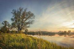 Ландшафт осени дерева на речном береге на заходе солнца Яркий c Стоковая Фотография RF
