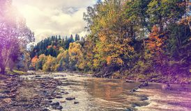 Ландшафт осени изумительный красочные деревья над рекой горы стоковая фотография rf
