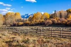 Ландшафт осени Колорадо Стоковая Фотография RF