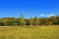 ландшафт осени красивейший стоковые изображения rf