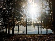 Ландшафт осени красивый с деревьями и желтыми листьями на озере против голубого неба на солнечный день стоковое изображение rf