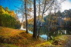 Ландшафт осени на реке Сибирь, Россия Стоковое Изображение RF
