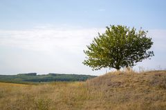 Ландшафт осени на солнечный день вне города Стоковое Изображение RF
