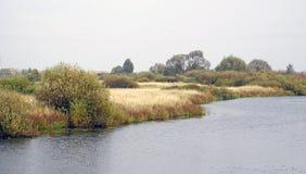 Ландшафт осени Пойма и река Berezina Солнечный день в октябре стоковая фотография rf