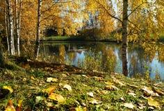 Ландшафт осени, река стоковая фотография rf