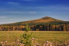 Ландшафт осени сельский накосил луг на предпосылке деревьев с красочной листвой стоковые изображения