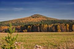Ландшафт осени сельский накосил луг на предпосылке деревьев с красочной листвой стоковое изображение rf