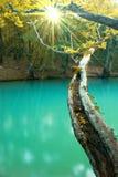 ландшафт осени солнечный Стоковая Фотография RF