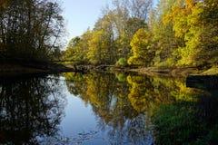 Ландшафт осени с озером стоковое фото rf
