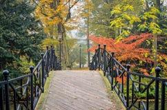 ландшафт осени цветастый Стоковая Фотография