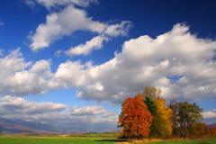 ландшафт осени Стоковое Изображение RF