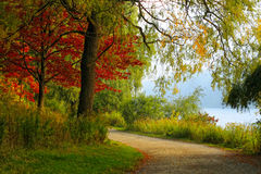 Ландшафт осени Стоковые Фото
