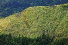 Ландшафт от вулканического озера кратера Sete Citades Стоковое Изображение RF