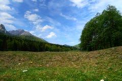 Ландшафт от долины стоковое фото