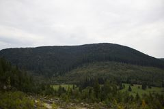 Ландшафт от Borsec Стоковая Фотография RF