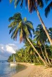 ландшафт пляжа тропический Стоковые Изображения