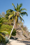 ландшафт пляжа тропический Стоковое фото RF