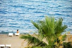 ландшафт пляжа Стоковые Фотографии RF