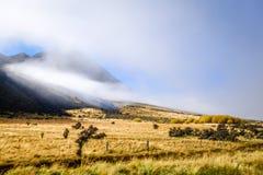 Ландшафт полей горы в Новой Зеландии Стоковое фото RF