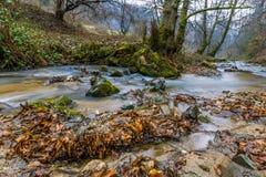 Ландшафт потока горы осени Стоковое Изображение RF