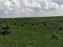 Ландшафт, природа, небо, облака, деревья, трава и луга стоковые изображения rf