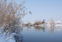 Ландшафт природы зимы Стоковые Изображения RF