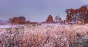 Ландшафт природы осени в ноябре Панорамный взгляд на луге и деревья покрыли падение изморози Пейзаж утра осени Стоковая Фотография RF