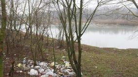Ландшафт природы осени, идя вне на берег озера леса, steadicam видеоматериал