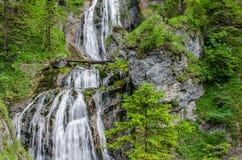 ландшафт природы с водопадом стоковое изображение