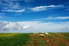 ландшафт просто Стоковая Фотография
