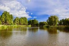 Ландшафт пруда с яркими цветами Стоковое фото RF