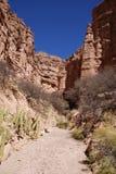 Ландшафт пустыни около Tupiza, Боливии Стоковая Фотография