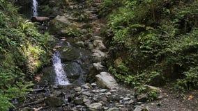 Ландшафт реки горы природы акции видеоматериалы