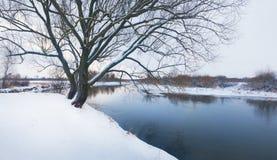 Ландшафт реки зимы стоковое изображение rf