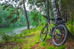Ландшафт реки лета с велосипедом Сибирь, Россия Стоковое Изображение RF