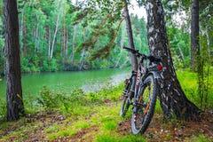 Ландшафт реки лета с велосипедом Сибирь, Россия Стоковая Фотография RF